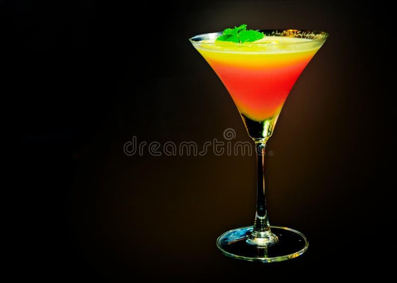 鸡尾酒用新鲜水果,五颜六色的coctail 库存图片