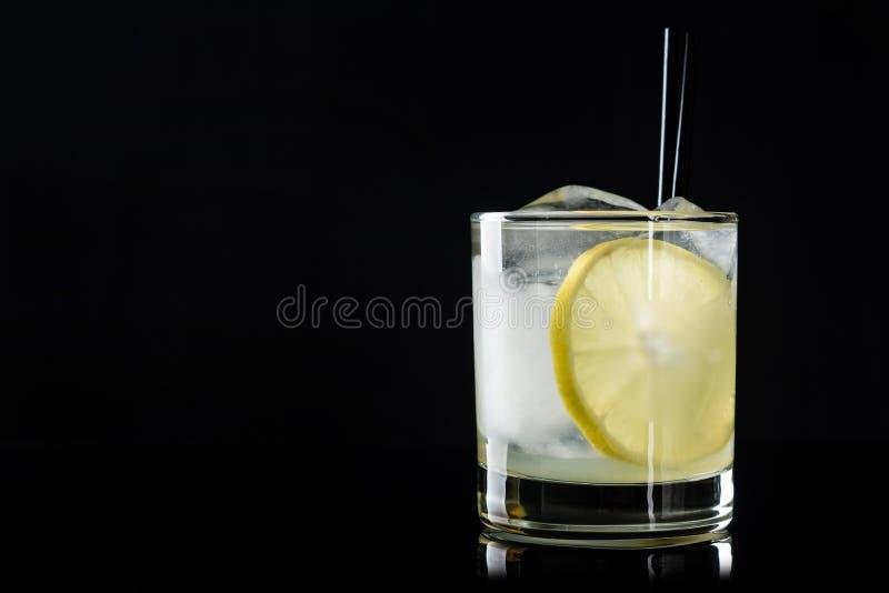 鸡尾酒用柠檬和冰 免版税库存图片