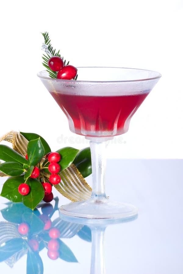 Download 鸡尾酒节假日 库存照片. 图片 包括有 柠檬, 关闭, 茶点, 柑橘, 绿色, 汁液, 丝带, 经典, 玻璃 - 3669338
