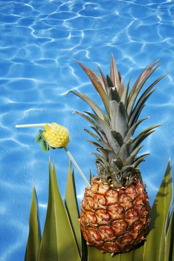 鸡尾酒菠萝 图库摄影