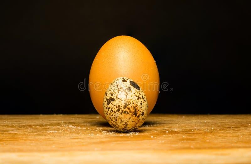 鸡怂恿鹌鹑 免版税库存照片