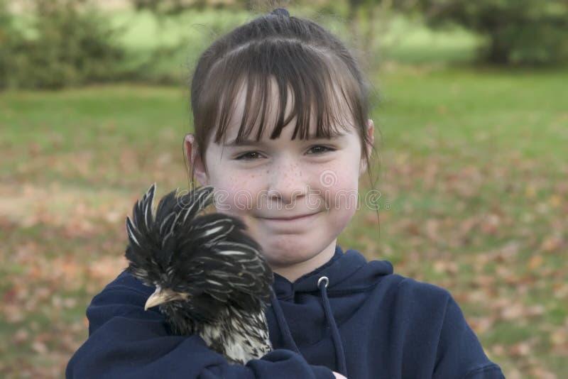 鸡我的宠物 免版税库存图片