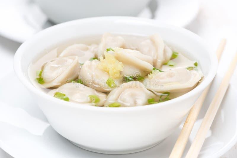 鸡汤用中国饺子,特写镜头 免版税库存图片
