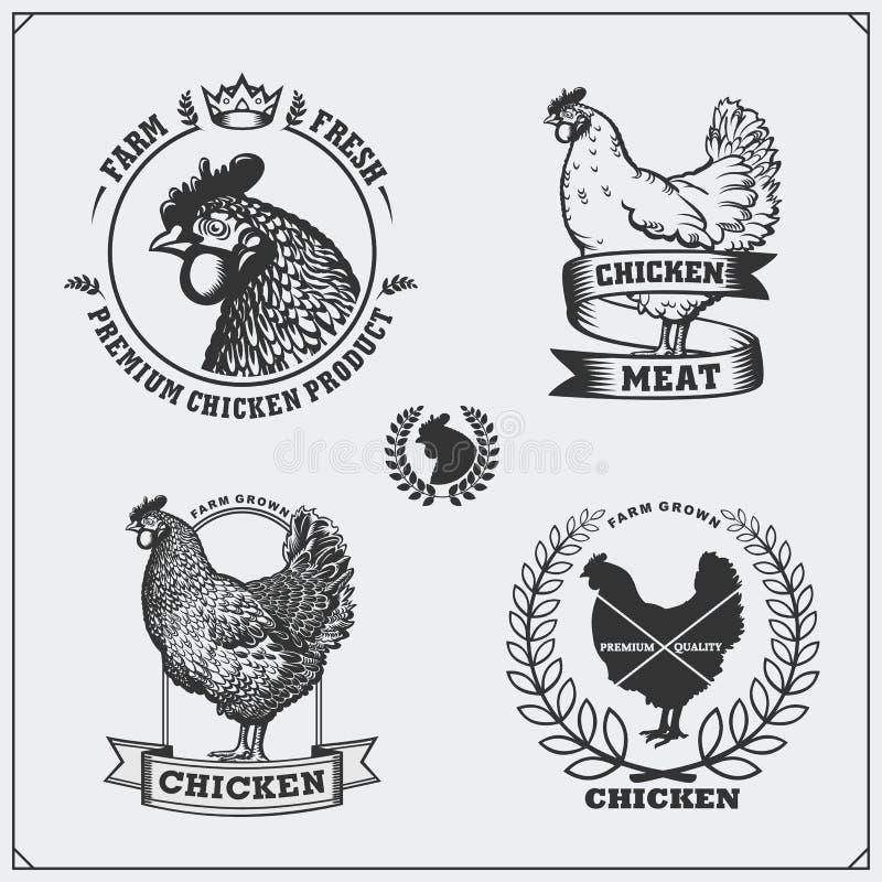 鸡肉标签、徽章、象征和设计元素的汇集 皇族释放例证