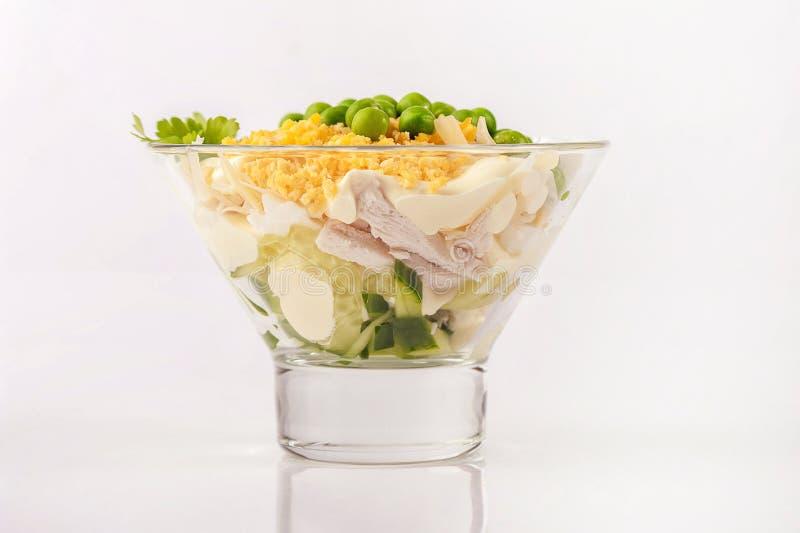 鸡肉沙拉用蛋黄酱 免版税图库摄影