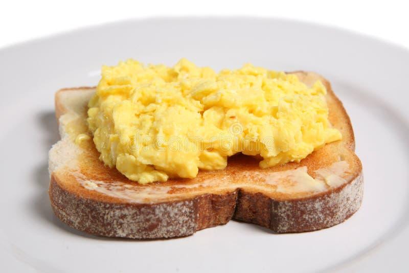 鸡蛋加扰了 库存照片