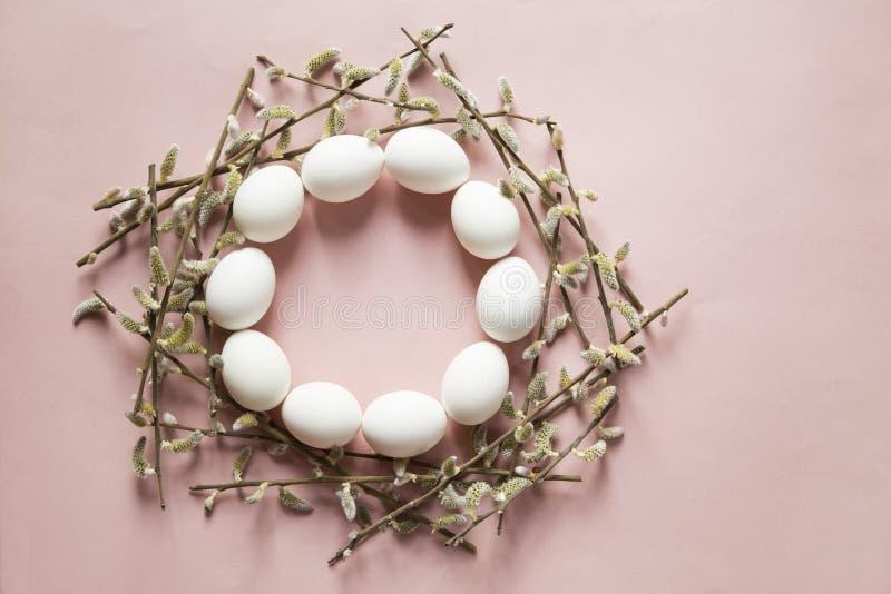 鸡蛋和杨柳 库存照片