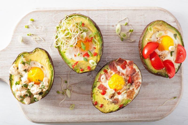 鸡蛋在与烟肉、乳酪、蕃茄和紫花苜蓿spr的鲕梨烘烤了 免版税库存图片