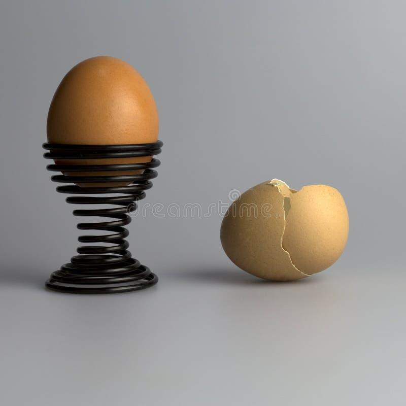 鸡蛋宏观彩色照相  免版税库存照片