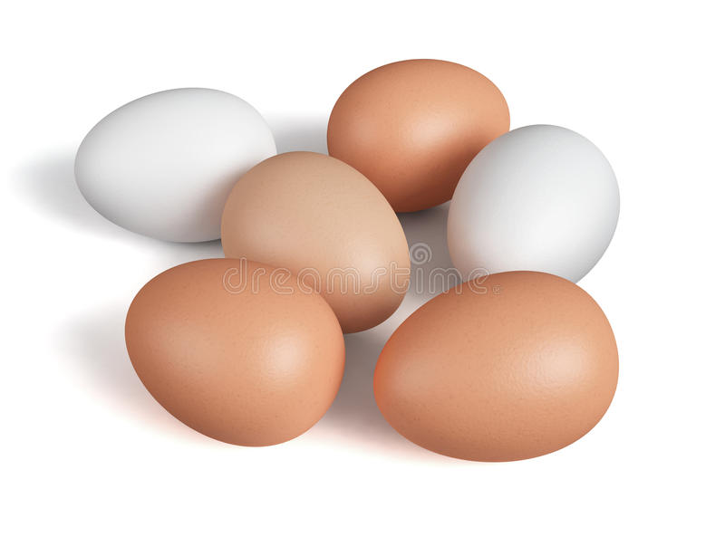鸡蛋查出白色 免版税图库摄影