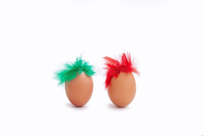 鸡蛋白色背景蛋红色绿色羽毛isoiated头发棕色堵嘴两 库存照片