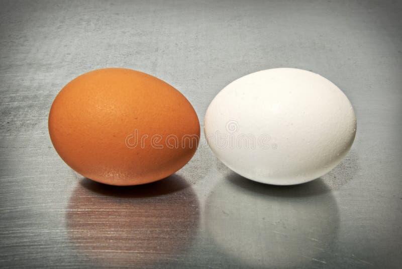 鸡蛋的争斗 库存图片