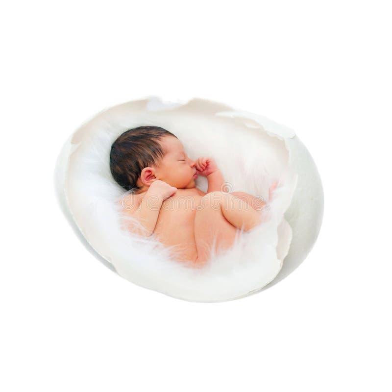 鸡蛋的新出生的婴孩 胎儿,胚胎, IVF概念 库存图片