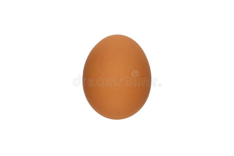 鸡蛋,鸡蛋,食物,褐色,被隔绝 库存图片