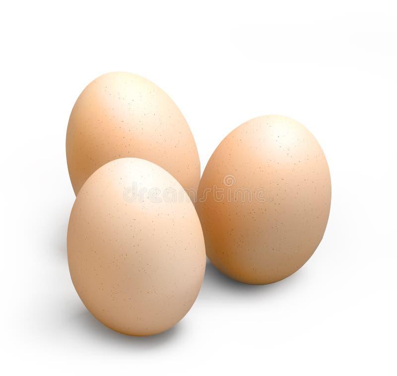 鸡蛋 皇族释放例证