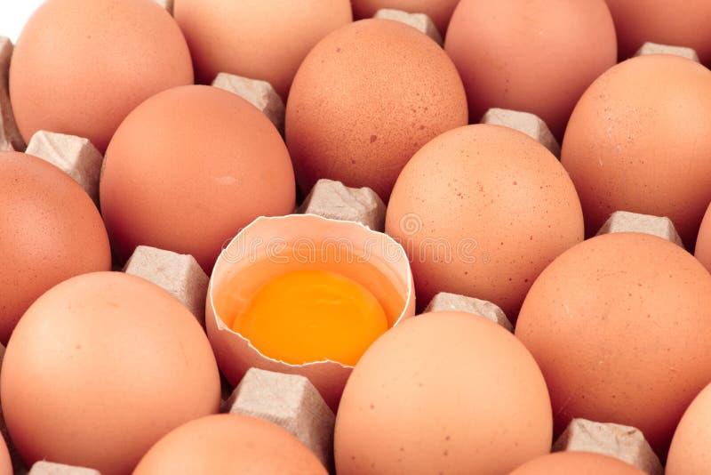 Download 鸡蛋 库存图片. 图片 包括有 卵黄质, 食物, 鸡蛋, 开放, 纸盒, browne, 电池, 纸板, 原始 - 22358129