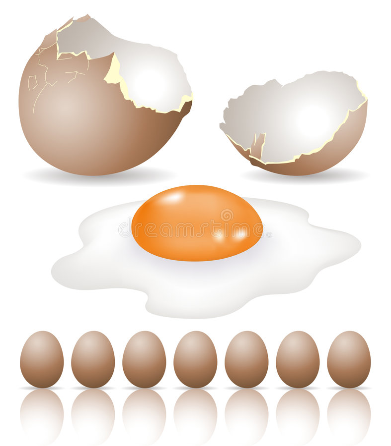 鸡蛋 库存例证