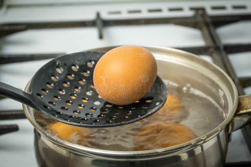 鸡鸡蛋在煤气炉的水中煮沸 库存照片