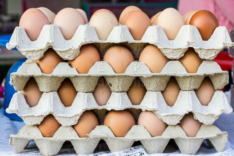 鸡鸡蛋 库存图片