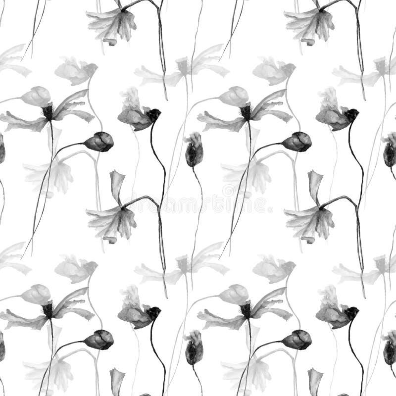 鸦片的单色水彩例证开花与瓣 向量例证