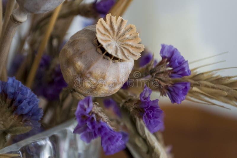 鸦片箱子、干燥紫罗兰色花和金钉 仍然1寿命 库存照片