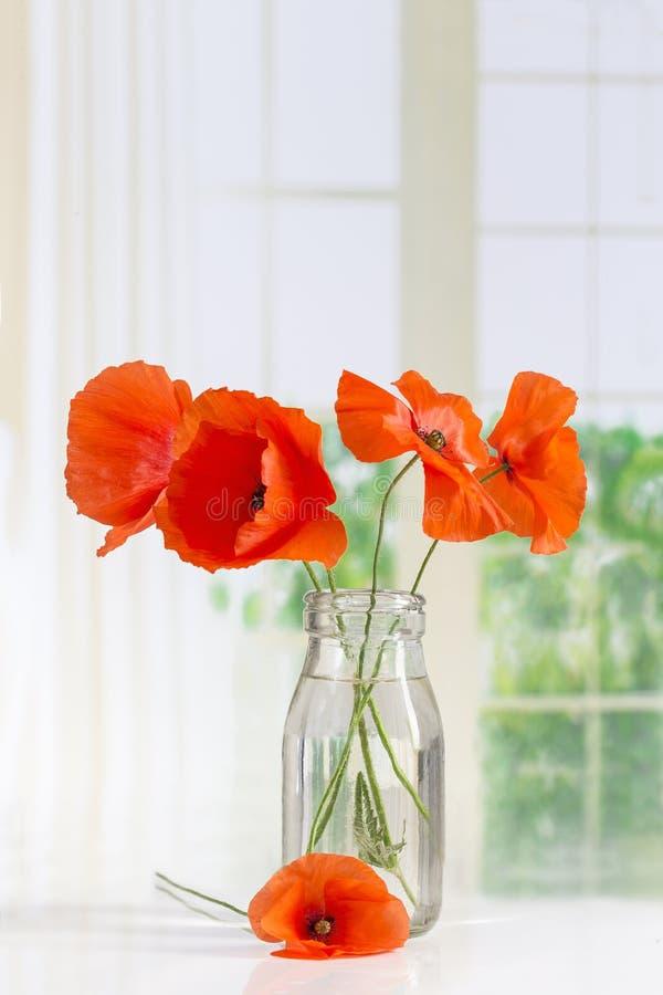 鸦片花束在玻璃花瓶的在白色 免版税库存图片