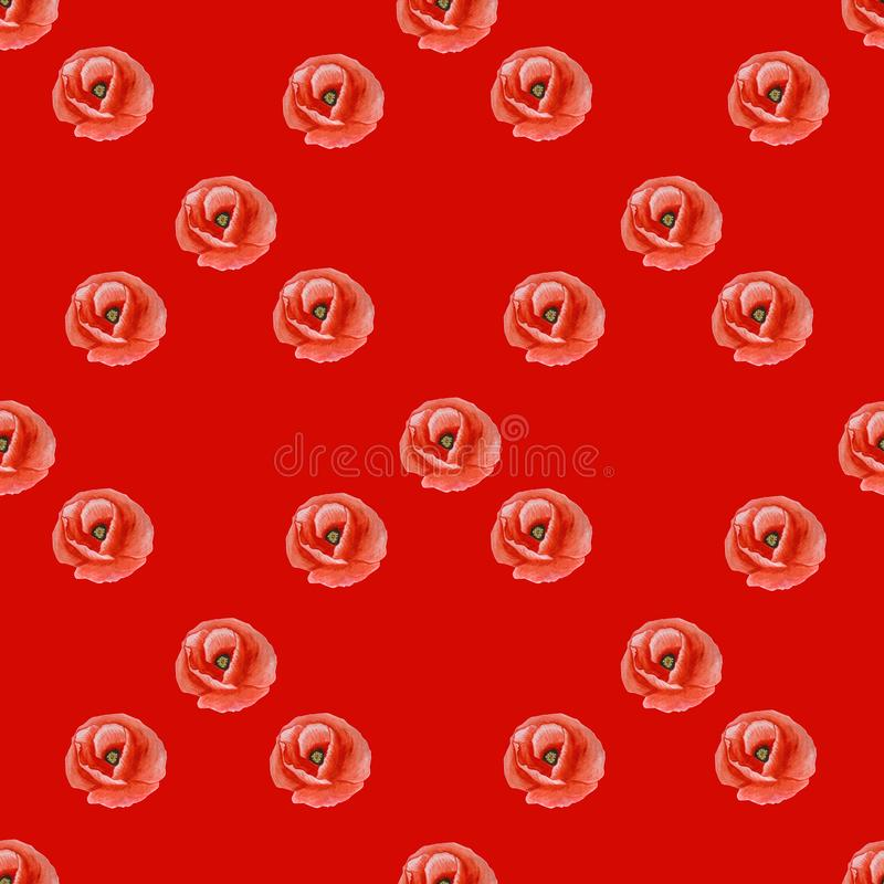 鸦片花简单的无缝的纹理在红色背景的 皇族释放例证