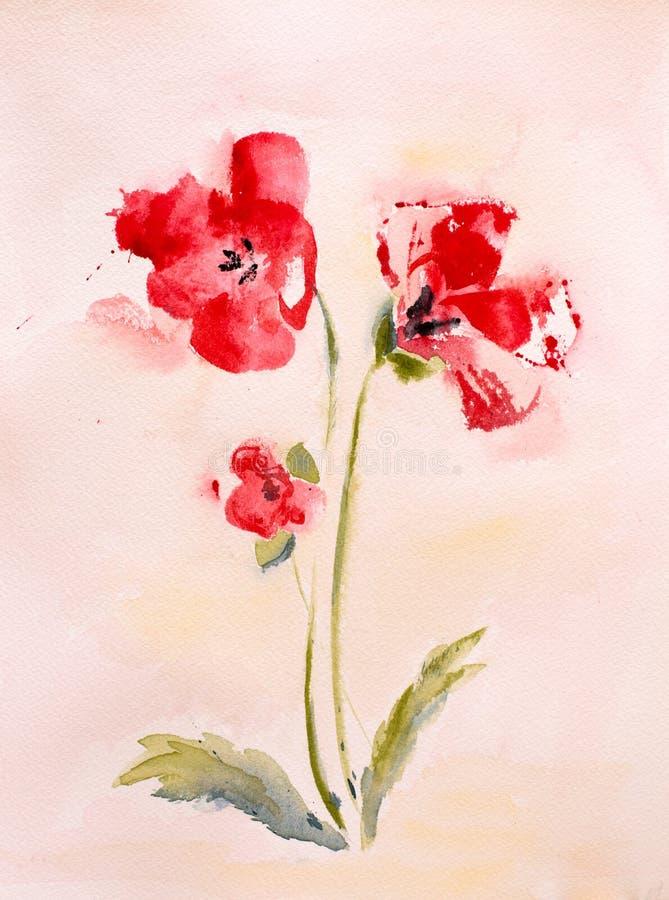 鸦片水彩绘画开花有晴朗的背景 库存例证