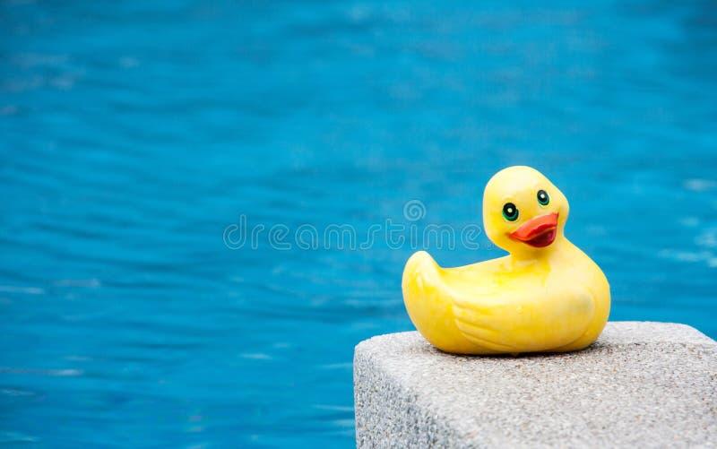 鸭子在游泳池的儿童玩具 图库摄影