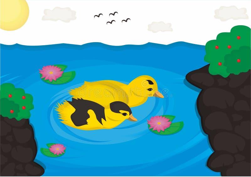 鸭子夫妇甜点 免版税库存照片