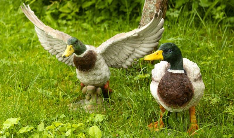 鸭子小雕象  免版税库存图片