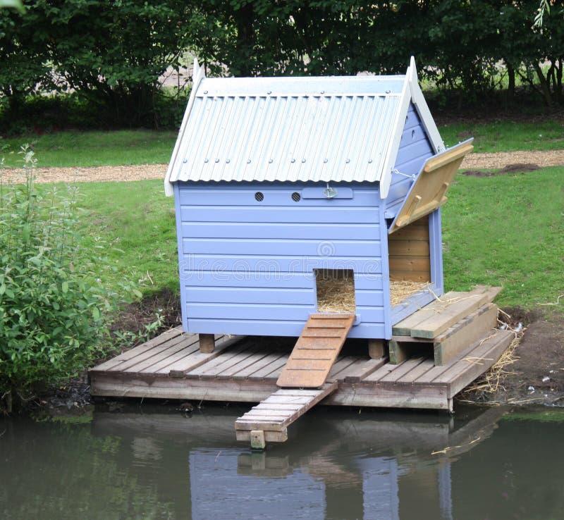 鸭子房子 库存图片