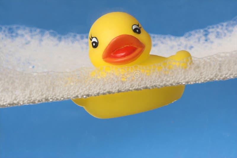 鸭子橡胶 免版税库存图片