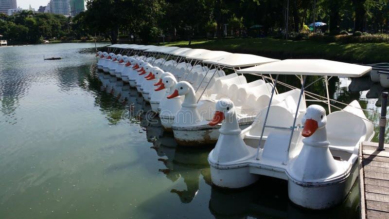 鸭子watercycle和小舟摆渡船口岸 免版税库存照片