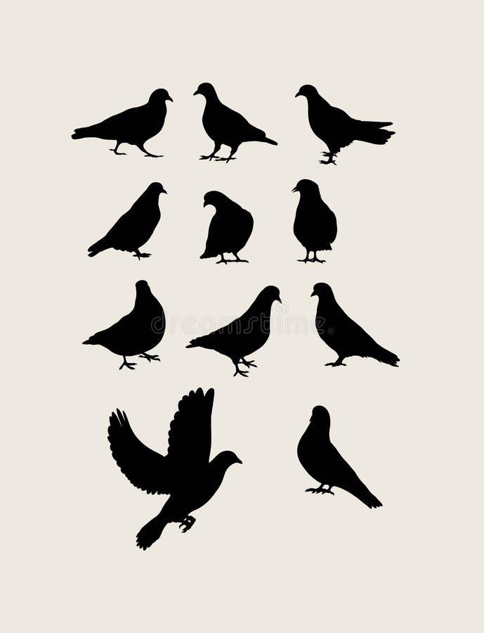 鸽子剪影 皇族释放例证
