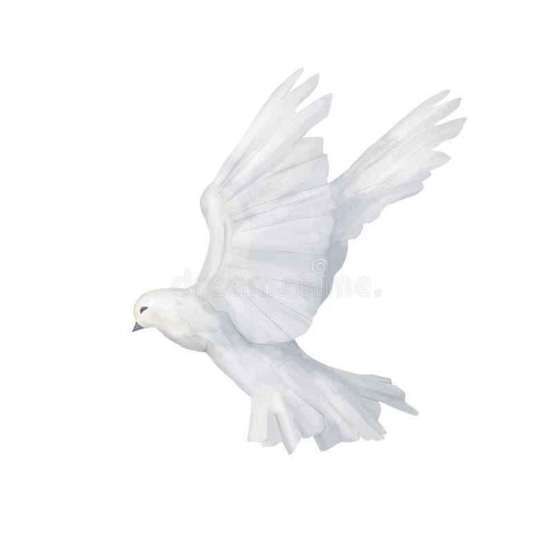 鸽子剪贴美术美丽的数字式图画水彩鸟飞行开花例证相似在白色背景 皇族释放例证