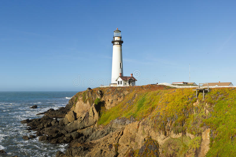 鸽子在加利福尼亚海岸的点灯塔 免版税图库摄影