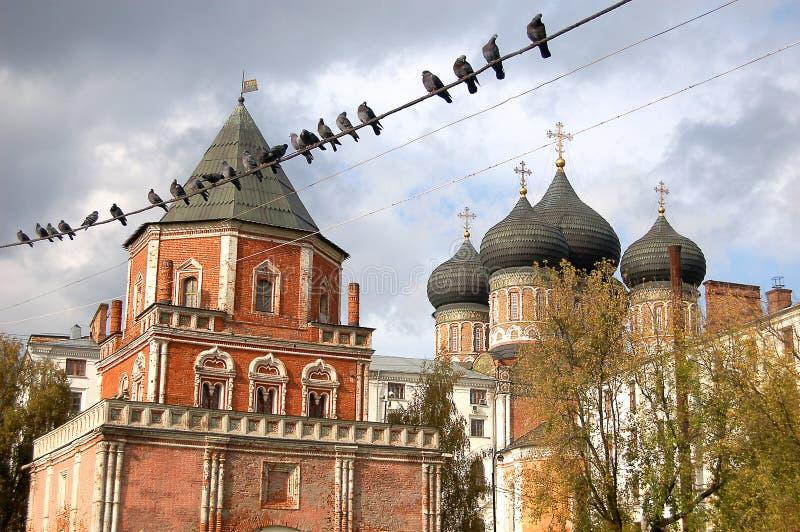 鸽子坐导线反对东正教 俄国 免版税库存图片