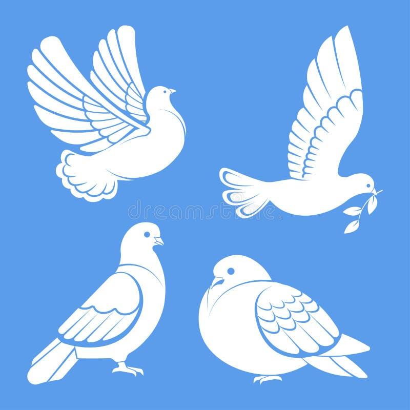 鸽子或鸠、白色鸟飞行与被涂的翼在天空或开会集合 向量例证