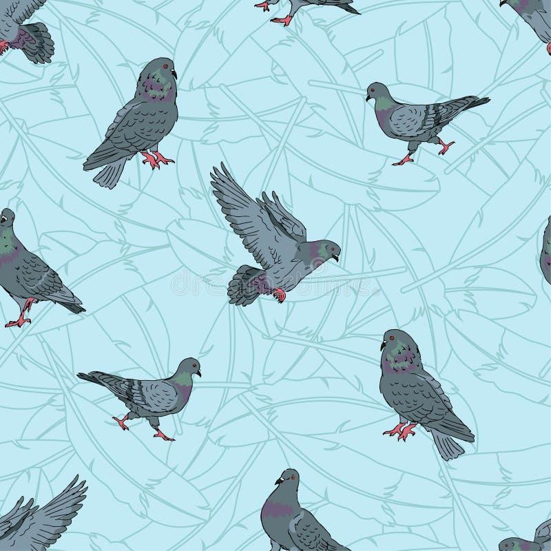 鸽子无缝的样式,街道都市城市鸽子鸟,动画片鸟背景,传染媒介编辑可能的例证 库存例证