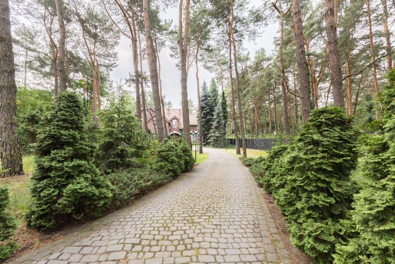 鹅卵石路在导致一个老房子的森林 真正的phot 免版税库存图片
