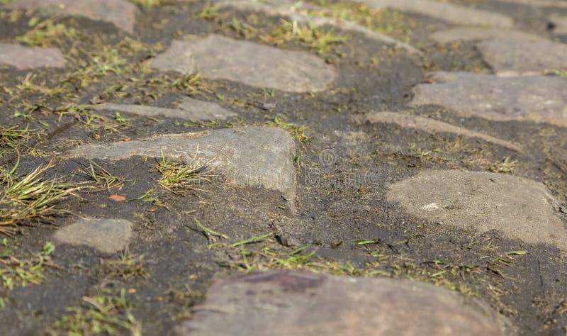鹅卵石路细节 库存照片