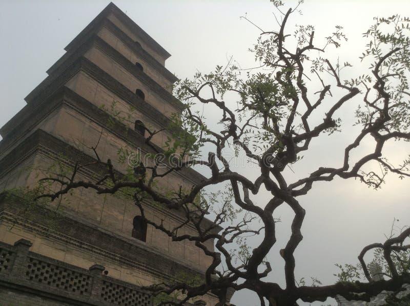 鹅塔中国 免版税库存图片