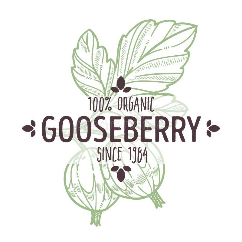 鹅莓与在有机农厂食物上写字的被隔绝的象 向量例证