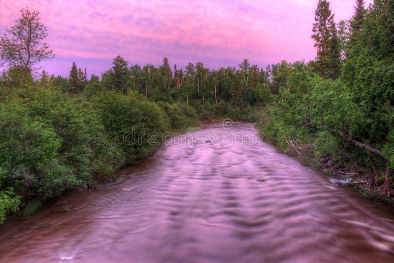 鹅莓在夏天落苏必利尔湖明尼苏达` s北部岸的国家公园  图库摄影