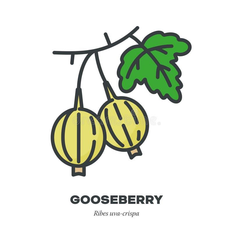 鹅莓果子象,填装了概述样式传染媒介 皇族释放例证