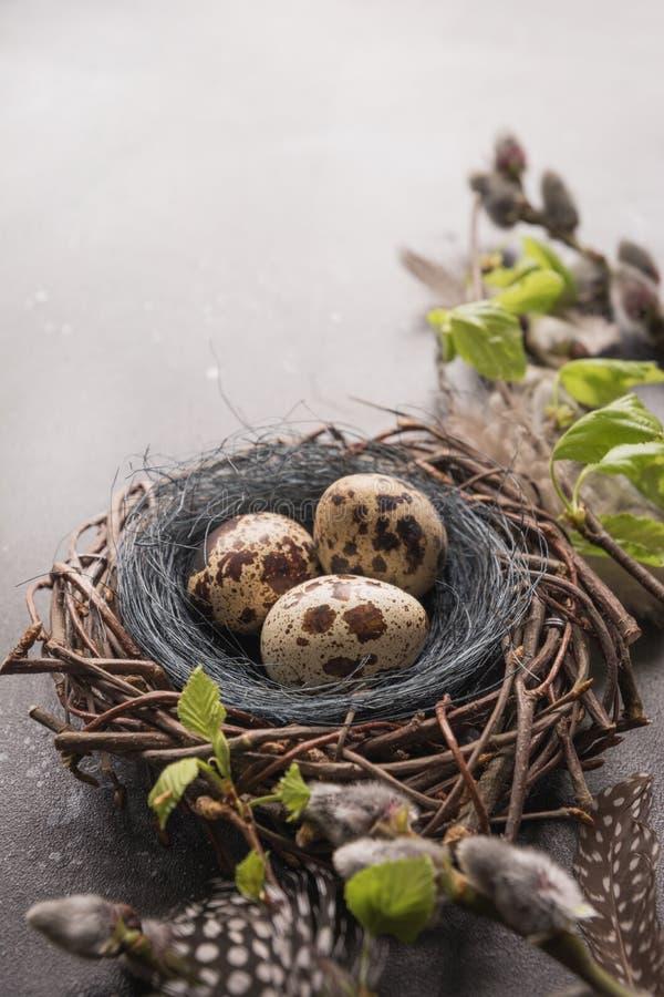 鹌鹑在巢和春天杨柳的复活节彩蛋在葡萄酒桌上 免版税图库摄影