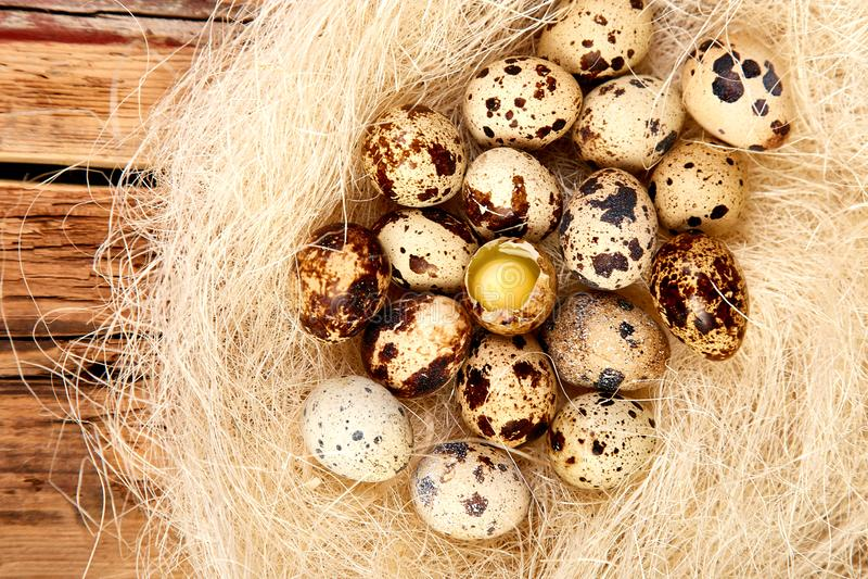 鹌鹑在巢的复活节彩蛋在木背景 库存照片