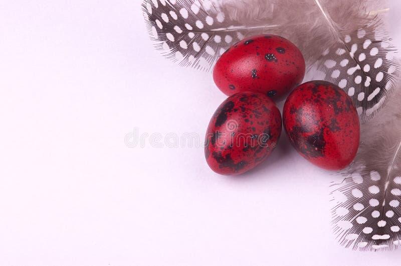 鹌鹑用被察觉的羽毛装饰的复活节彩蛋 免版税库存图片