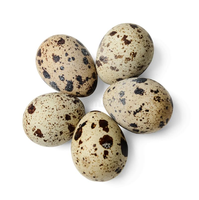 鹌鹑蛋一些个片断在白色被隔绝的背景的 r r 免版税库存照片